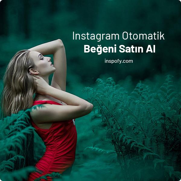 Instagram Otomatik Aylık Beğeni Satın Al